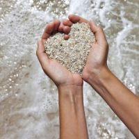 La Compassion Dans Le Domaine Du Soin